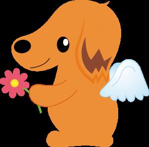 天国へ行く犬イメージ